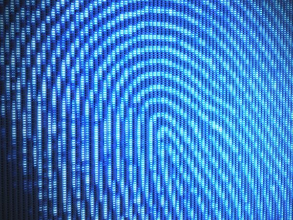 A pixilated, digitized photo of a fingerprint, rendered in shades of blue.