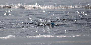 Image of a plastic bottle in a body of water.
