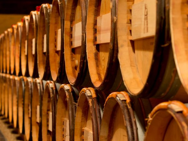 Wine barrels in a row.
