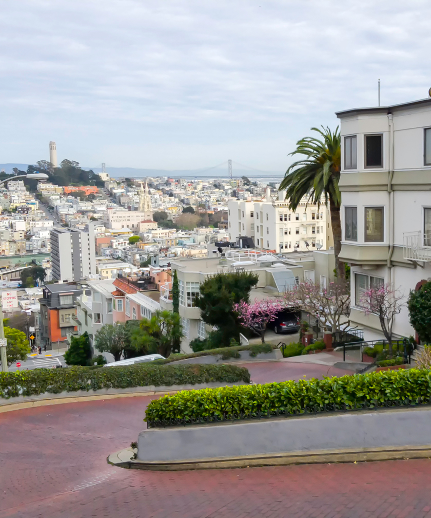Photograph of Lombard St.